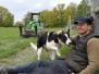 Arbete med får